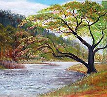 River Tweed below Yair Hill  by BillCowe