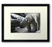 Play time #2 Framed Print