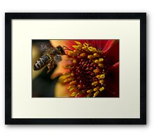 Compton Acres 14 Framed Print