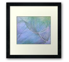 Lacey Blue-Available As Art Prints-Mugs,Cases,Duvets,T Shirts,Stickers,etc Framed Print