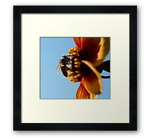 Compton Acres 15 Framed Print