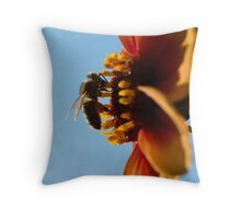 Compton Acres 15 Throw Pillow