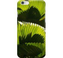 green V - verde iPhone Case/Skin