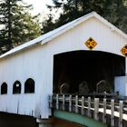 Rochester Covered Bridge by aussiedi