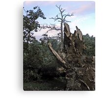 We All Need Roots Canvas Print
