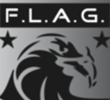 FLAG 2009 Logo Sticker