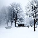 Orillia Waterfront: Winter Bandstand by Gracey