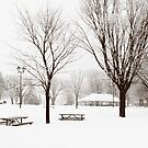 Waterfront Winter Park by Gracey