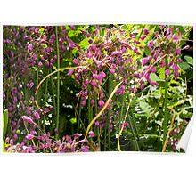 Painterly garden Poster