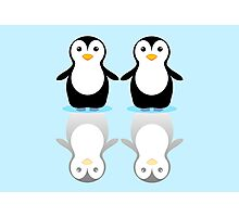 PENGUIN PAIR ON ICE Photographic Print