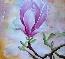Magnolia by Jeno Futo