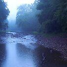 River Rain by NatureGreeting Cards ©ccwri