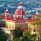 Monserrate Palace. Sintra by tereza del pilar