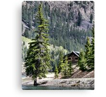 Crooked Fir  Canvas Print