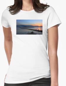 One Man And His Dog Womens Fitted T-Shirt