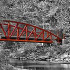 Copper top bridge by trwphotography