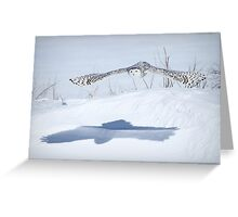 The silent hunter Greeting Card