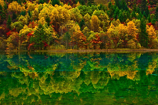 Autumn in Jiuzhaigou by Daniel H Chui