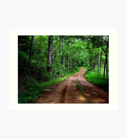 Spring Country Path Art Print