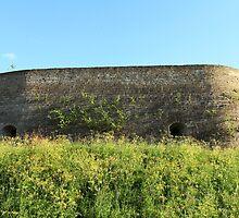 solid bastion by mrivserg
