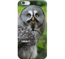 Great Grey Owl iPhone Case/Skin