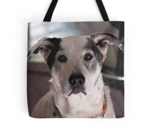 ICEMAN LOVE Tote Bag