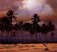 Dominican Beach by Dan Perez