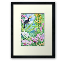 Toucan of the Amazon Framed Print