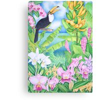 Toucan of the Amazon Canvas Print
