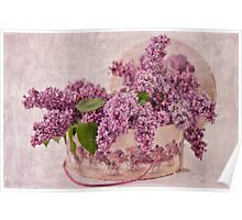 Lilacs In The Box Poster
