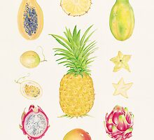 Tropical Fruit I by joeyartist