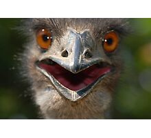 Psycho Bird Photographic Print