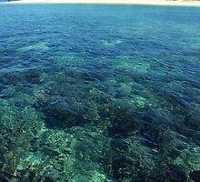 Floating over the reef near Fijian island by Clinton Plowman