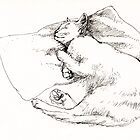 Chang sleeping by Roz McQuillan