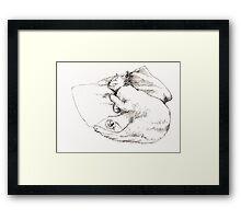 Chang snoozing Framed Print