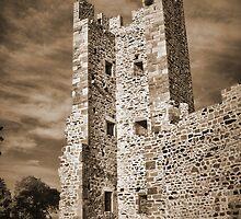 Ruins of Hyeres Castle... by jean-louis bouzou