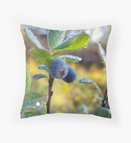 Blueberry Throw Pillow