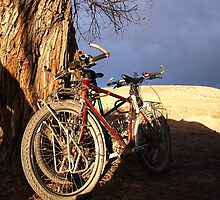 Bikes Under Dark Skies by travellingtwo