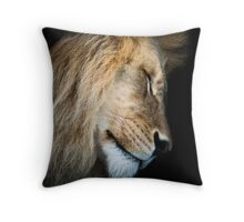 Restful Ruler Throw Pillow
