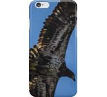 Bald Eagle Juvenile Fly By iPhone Case/Skin