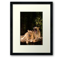 You forgot your breath mint again! Framed Print