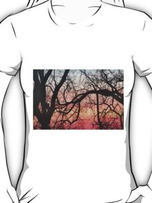 Sunrise at Greys Lake in Des Moines T-Shirt