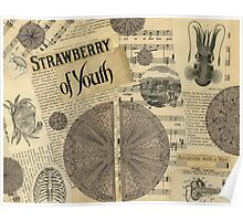 Strawberry of Youth Poster