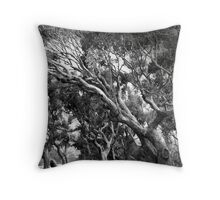 'Approaching Storm' Throw Pillow