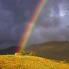 Rainbow near Bega, NSW. by Ern Mainka