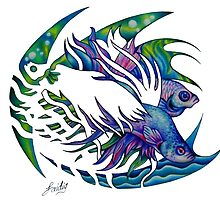 Siamese fighting fish by Aarron Laidig