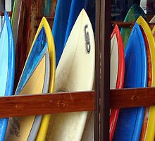Surf boards by Wabacreek Photography