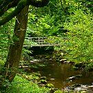 Across the River Twiss by Trevor Kersley
