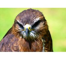 Fractual Falcon Photographic Print