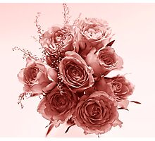 Rose coloured dreams Photographic Print